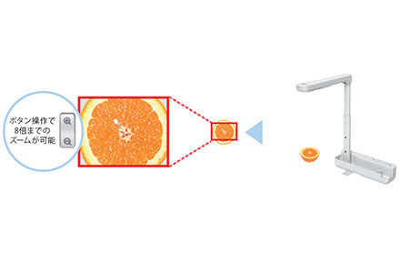 用書法照相機可以進行真實的投影