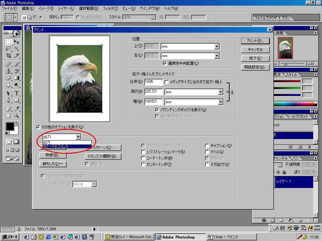 Adobe Scene7 * ICC プロファイル