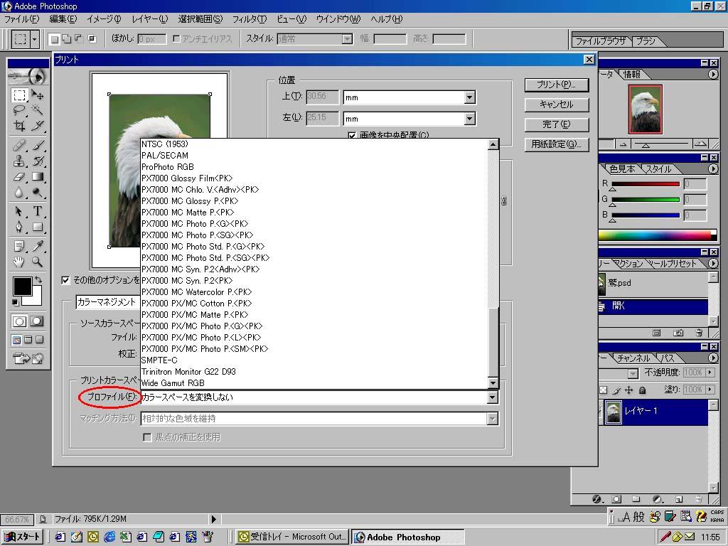 ICCプロファイル | イルフォード